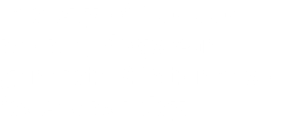 In a city of 100,000 people, dogs can generate 2 ½ tonnes of faeces per day.